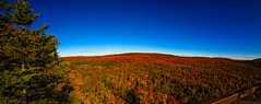 Fall Colors Panorama (JohnMiller Photography) Tags: red sky panorama orange mountain lake minnesota yellow photo stitch hiking fallcolors north shore northshore vista lutsen superiorhikingtrail oberg obergmountain colorphotoaward tokina1116mm