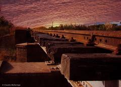Estación Matilde, Santa Fe, Argentina (Claudio.Ar) Tags: sunset sky santafe color argentina clouds sony country fields railways dsc pampa h9 claudioar claudiomufarrege