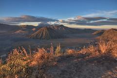 Mt. Bromo - Pananjakan 2 Bukit Seruni