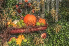 Harvest Days HDR (dlsteele01) Tags: pictures autumn usa sun sunlight lake abstract color art fall colors beauty sunshine canon virginia october afternoon artistic photos pics creative pic celebration celebrations abstracts scenes hdr clarksville kerrlake anycoloryoulike masterphotos harvestdays coloursplosion colorsplosion colorsinourworld coloursinourworld colorinourworld creattivit creattivita colourinourworld dlsteele01 vipveryimportantphotos vividstriking