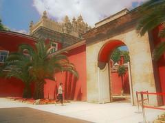 Home of Ataturk (Fran Caparros) Tags: red turkey palms rojo asia europa europe ataturk turkiye palace palmeras sultan ottoman turquia palacio barroco dolmabahçe otomano