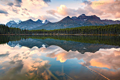 Liquid Reflection (Scott Pudwell) Tags: pink trees lake canada color reflection clouds sunrise landscape photography jasper alberta banff icefieldparkway scottpudwellphotography