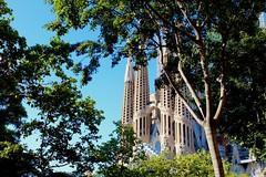 Sagrada Familia (giuliaeleonoralobasso) Tags: spain beautiful treesandsagradafamilia frombarcelona amazingview view travelling gaudi postcard sagradafamilia barcelona