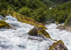 Downstream (johanbe) Tags: kleivafossen water power nature kraft natur fors rapid norge briksdal tree nikon nikkor iamnikonsummer photoftheday stream flod fart speed briksdalsbreen