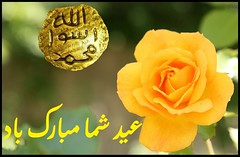 Eid Mubarak (moslihh) Tags: عید مبارک الاضحی eid mubarak islam muslim mohammed flower garden rose seal prophet