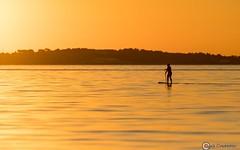 Sunrise Paddle - 500_0165 (Cyril Charpin) Tags: paddle sup cannes frenchriviera sunrise cotedazur france