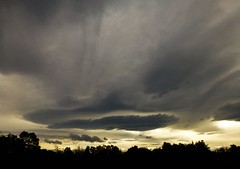Stormy Lenticulars..x (lisa@lethen) Tags: lenticular stormy weather nature cloud trees silhouettes