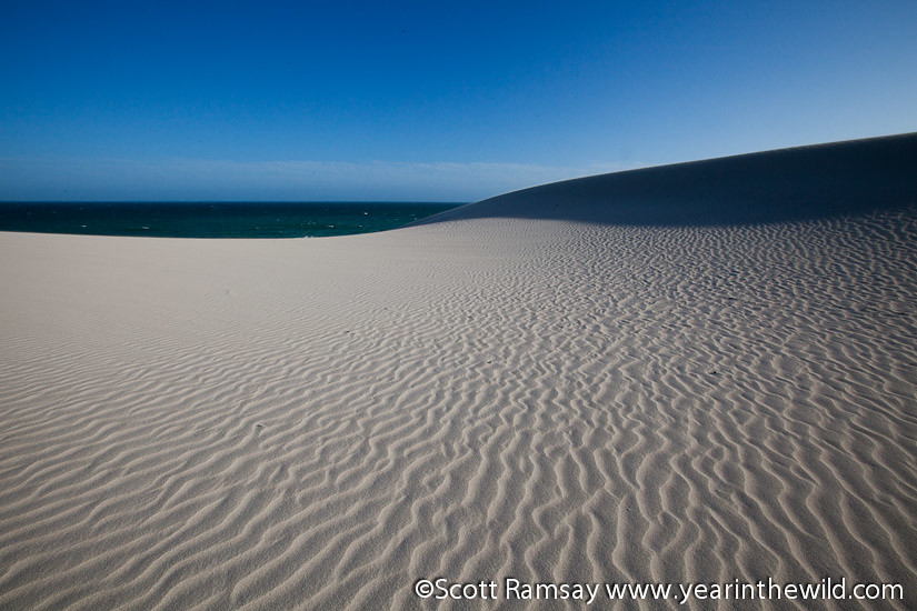 De Hoop Nature Reserve - South Africa