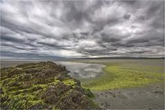 Bretagne low tide 2012-08-14 131001 (AnZanov) Tags: sky france beach clouds nuvole photographer andrea tide low bretagne cielo spiaggia hdr hdri 2012 bassa marea alghe zanovello anzanov
