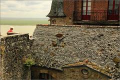 Mont Saint-Michel (claude lina) Tags: france manche montsaintmichel remparts baie abbaye merveille cloître bassenormandie tombelaine mèrepoulard égliseabbatiale