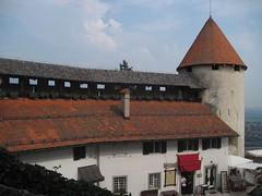 Bled castle (Sokleine) Tags: castle europe eu medieval slovenia chteau middleages burg slovnie