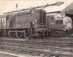 Ebbw Junction (sprocket316) Tags: southwales newport ej class37 railwaydepot 3203 6977 class08 locoshed 37277 86b ebbwjunction 08135