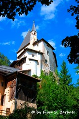 Santuario di San Romedio (TN), 2012. (Fiore S. Barbato) Tags: italy san valle val non alto trentino santuario coredo adige eremita romedio