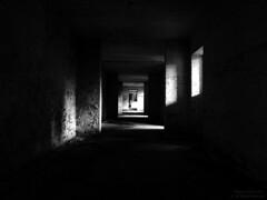 In The Shadows (...She) Tags: uk light england blackandwhite bw white black rot abandoned rust shadows darkness decay neglected corridor forgotten forsaken derelict deserted sdp ue urbex rafbase sheenaduckworthphotography