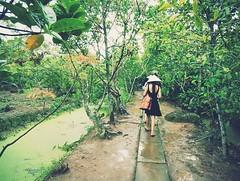On the island of Mekong river (jijis) Tags: trip summer hot river island asia vietnam rainy jing mekong 2012 mytho jijis
