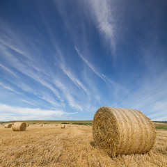 Harvest Skies (s0ulsurfing) Tags: uk blue autumn light shadow england sky cloud sunlight tractor english texture nature lines weather clouds composition rural canon landscape island countryside scenery skies natural britain pov farm patterns country farming rustic wide perspective straw blues wideangle september vectis isleofwight vista fields british hay agriculture bales bale landschaft isle wight bucolic foreground 2012 bailing 10mm leadinglines sigma1020 leadin s0ulsurfing vertorama bucolical worzels findbritain welcomeuk