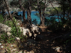 The smell of the sea (Monika Kostera (urbanlegend)) Tags: croatia dubrovnik babinkuk