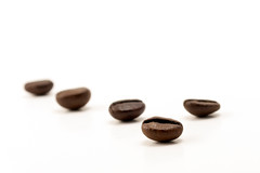 just coffee beans - Kaffeebohnen (photography.andreas) Tags: morning food brown white macro coffee caf closeup breakfast canon dark studio photography cafe beans healthy energy flavor natural quality background beverage grain picture seed kaffee columbia bean fresh minimal roast arabic gourmet clean whitebackground health arab bow harmony simplicity backdrop espresso braun caffeine product simple coffe onwhite cofee freshness roasted kaffeebohnen aroma arabica ingredient coffeebeans cafee bohnen overwhite kaffeebraun fooddesign braune produktfotografie braunes kaffebohnen 100arabica kaffeefarbe kaffeefarben kaffeefarbig