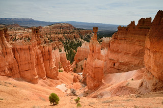 Hoodoos by Bryce Canyon