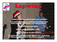 Lapwing Charity Event