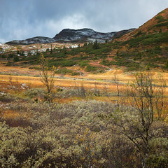 Fuji X10 Farewell (Krogen) Tags: nature norway landscape norge natur norwegen noruega scandinavia krogen landskap noorwegen noreg skandinavia oppland synnfjellet nordreland fujifilmx10