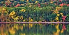 Colors on Canadice (Tom Pruzenski) Tags: trees lake newyork color reflection art texture nature water contrast photography cool interesting nikon flickr pretty hiking hike fingerlakes canadice d7000 tompruzenski