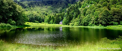 Paradis vert......... (Malain17) Tags: panorama mountains nature colors forest photography image pentax altitude photographers lac arbres chalet capture paysage reflets verdure tang srnit