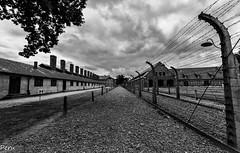 No mans land (Perurena) Tags: campodeconcentracion barracones alambrada alambredeespino electricidad vallas postes tierra prisioneros judios jews genocidio auswitch polonia