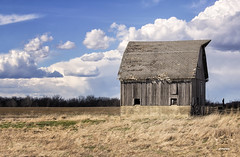 Small Old Wooden Barn (SteveFrazierPhotography.com) Tags: barn dilapitated wooden old decaying wood field farm farmland farming agriculture illinois il chili stevefrazierphotography canoneos60d clouds sky daytime daylight afternoon springtime may spring usa america plowedfield fences