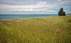 Warren Dunes State Park (mswan777) Tags: beach dune grass water lake michigan great lakes seascape nature summer clouds sky open breeze nikon d5100 sigma 1020mm