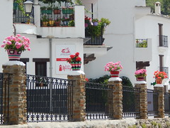 77. (Seweet) Tags: trevelez andalucia granada alpujarra macetas white crochet
