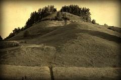 Gra Cisowa, Suwalski Park Krajobrazowy, Suwalska Fudijama (stempel*) Tags: polska poland polen polonia gambezia pentax k30 50mm suwalszczyzna suwalska fudi jama fuji suwalski park krajobrazowy