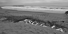 Escuela (Fer Gonzalez 2.8) Tags: beach paint perspective sand blackwhite photography leica leicadlux4 mdq