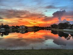 Sunrise iPhone 01-20160827 (Kenneth Cole Schneider) Tags: florida backyard miramar sunrise