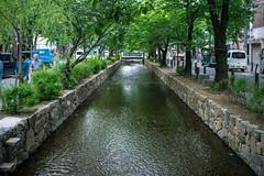(蔡藍迪) Tags: 二度目の京都 京都 日本 關西 kyoto nidomenokyoto japan japanese d600 nikon 尼康