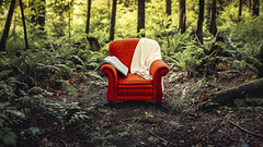 Take Me There (Vuong Cong Minh) Tags: red woods book calm chair clearing forest furniture nature peaceful trees wilderness comfort armchair atlis blanket comfy concept livingroom map nurture outdoors wood