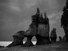 Hopwell Rocks (marianna_away for a while) Tags: newbrunswick nb bayoffundy fundy park hopwellrocks beach tide canada landscape bw blackandwhite monochrome mariannaarmata