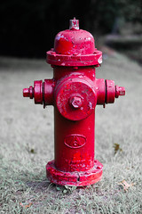 Day 233 (rendezvousnu) Tags: hydrant firehydrant projecteulalie eulalie project365 red contrast