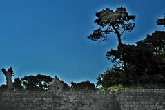 """Noche americana"" * (Franco DAlbao) Tags: francodalbao dalbao samsungwb700 nocheamericana americannight fortaleza fortress monterreal bayona galicia murallas walls almenas battlements garita sentrybox"