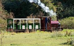 IMG_3274 (Hampton & Kempton Waterworks Railway.) Tags: darent devon arrives loop