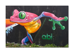 Street art, Brighton (hehaden) Tags: frog pink art streetart graffiti blackrock brighton sussex