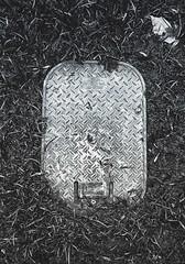 Square (cyberain89) Tags: samara grass square day summer bw iphone maxcurve