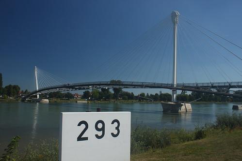 Rhin au kilomètre 293