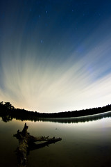 Stars of the forest (Mathijs Jansen) Tags: wood blue light shadow lake fish black water netherlands bulb night forest canon stars timelapse log woods eindhoven driftwood galaxy stick drift 550d