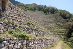 Machu Picchu-8