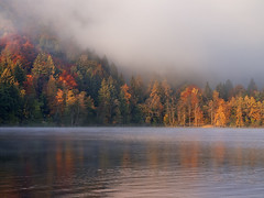 Blejsko jutro / Morning in Bled 6 (Union*) Tags: morning light lake nature fog forest woods foggy slovenia bled jezero blejsko