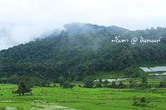 PhamonVillage-DoiInthanon-ChiangMai-Trip_By-P r i m t a a_E10886166-022