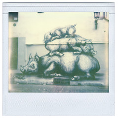 ROA's sleepy pigs (justk photography) Tags: brussels streetart polaroid graffiti streetartist pigs polaroidspectra brussel roa lollepotstraat thelittledoglaughed polaroidspectrasystem pz680 pz680colorshade px680colorshadecool