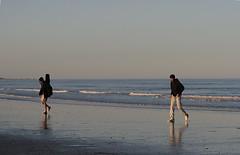 Wet Sand (Lexandeer) Tags: sea birds mare cell porto gabbiani ravenna sabbia corsini marinaromea portocorsini