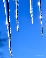 Vibrant Spikes (misst.shs) Tags: blue winter sky macro sparkles nikon hmm icicles sandpoint northidaho colburn macromondays d7000 vibrantminimalism